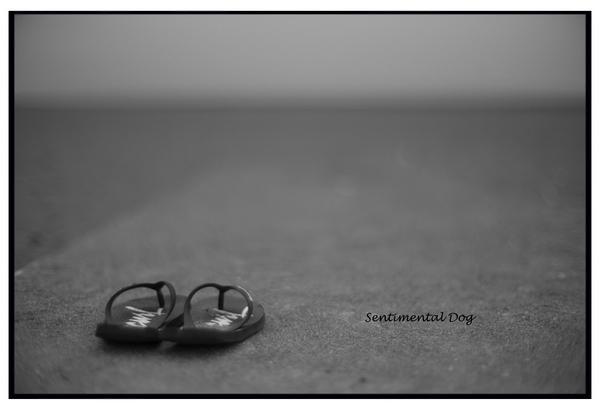 Beachsanda.jpg