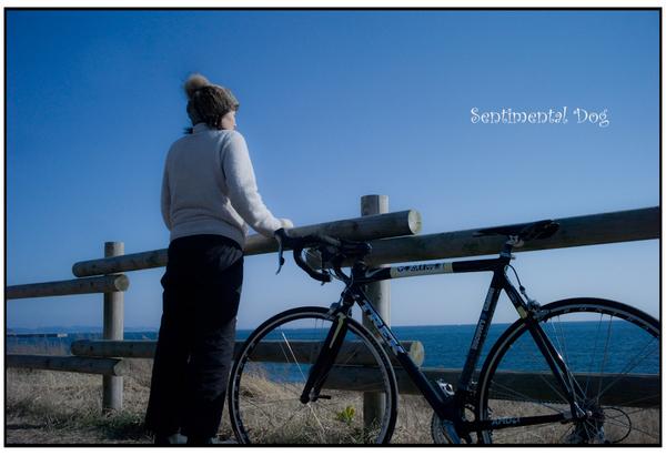 Bycycle2.jpg