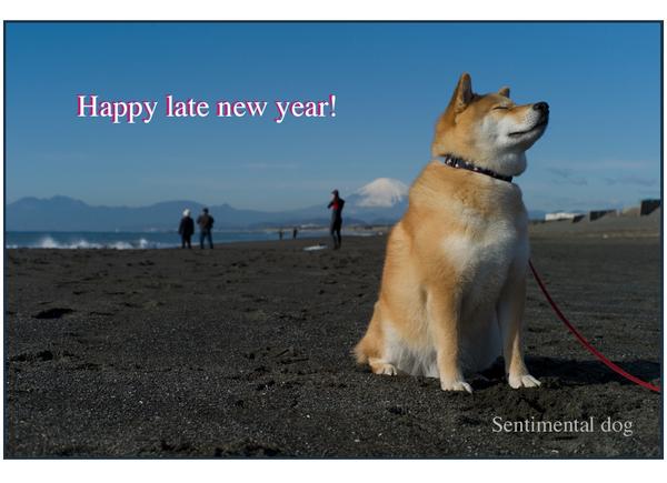 Happy late new year!.jpg