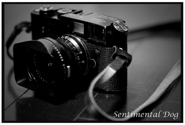 Leica M4BP.jpg